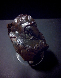 Hemaite botroidal - Taouz, Er Rachidia Marruecos - 7x6 cms 14,99